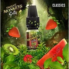 12 Monkeys Kanzi Nic Salt