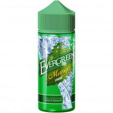 Evergreen Mango Mint Longfill