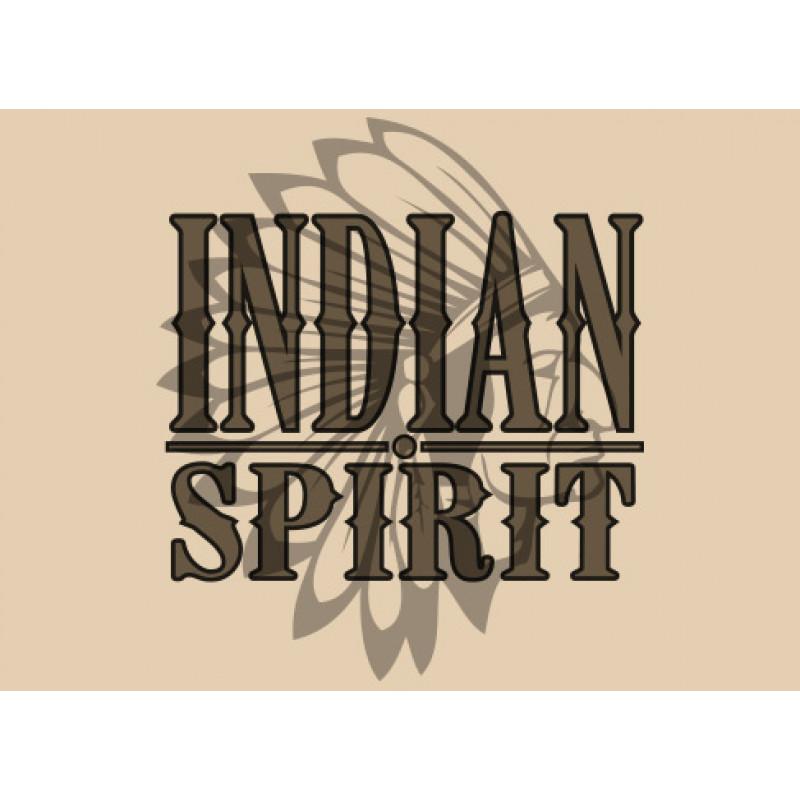 Ben Northon Indian Spirit Logo