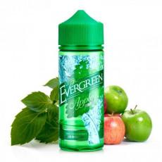 Evergreen Apple Mint Longfill