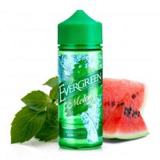 Evergreen Melon Mint Longfill