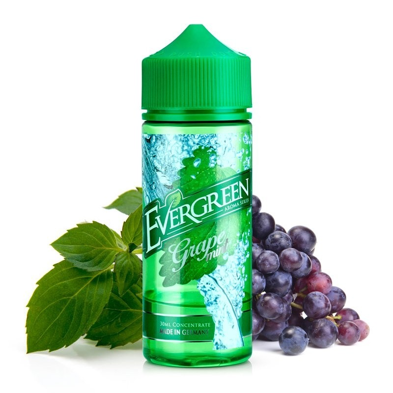 Evergreen Grape Mint Longfill